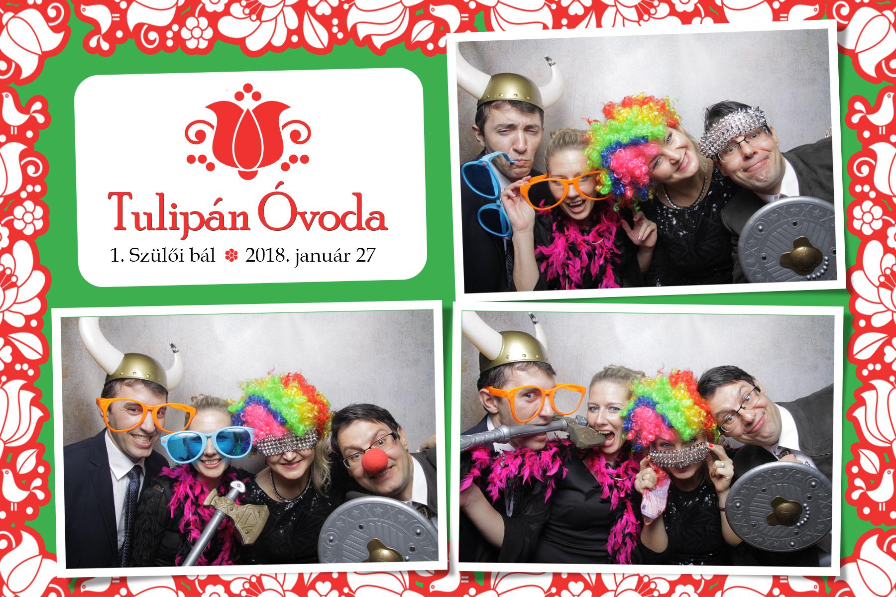 selfiecam-2018-01-27-Tulipan ovi (37)
